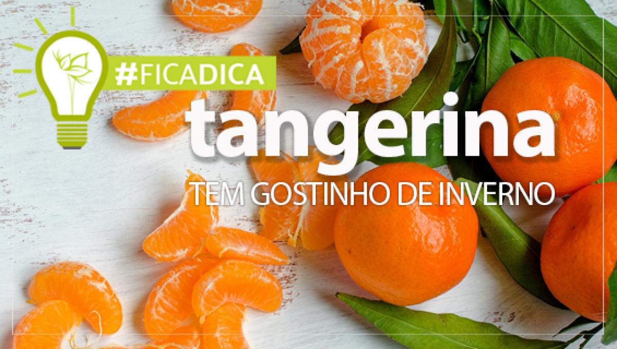 TANGERINA – GOSTINHO DE INVERNO
