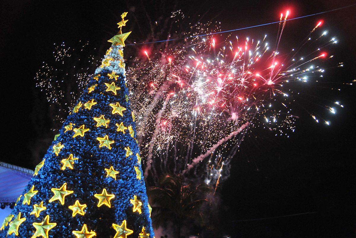 Barra Velha (SC) quebra recorde com árvore de Natal feita com garrafas pet