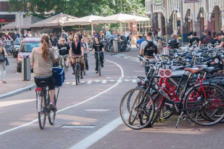 Bicicleta – Estilo de Vida Saudável